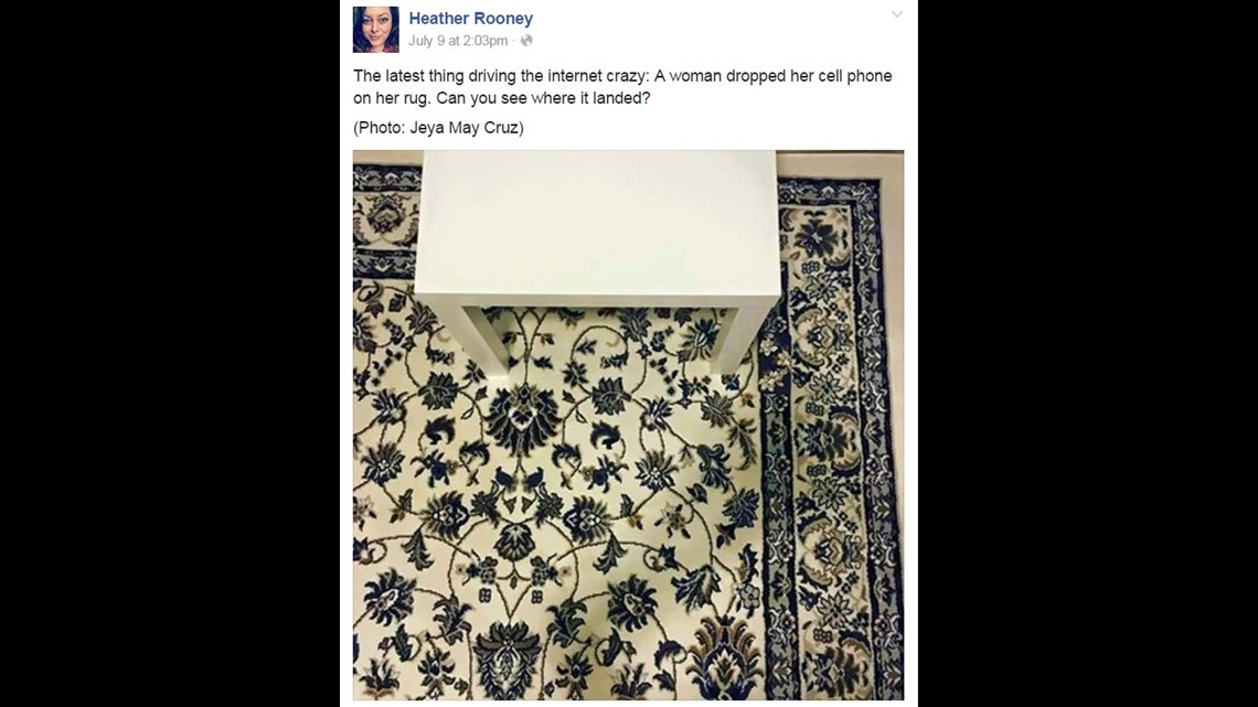 Can You Find The Cellphone On This Rug