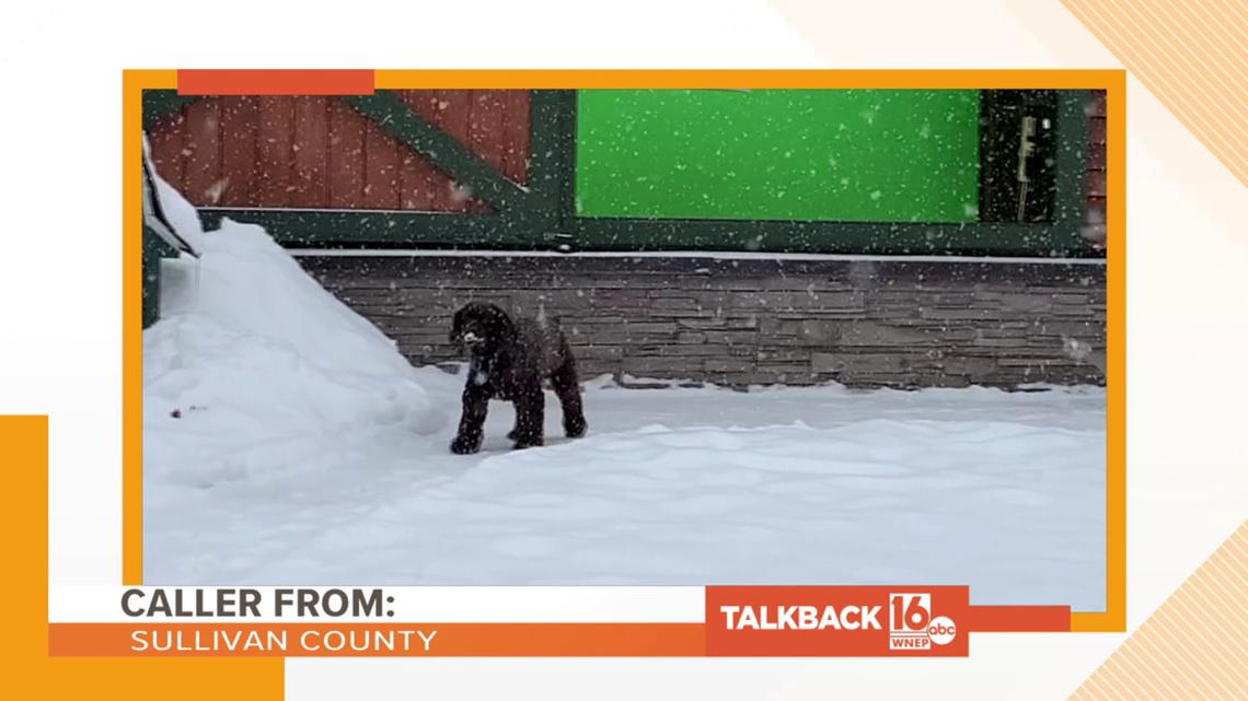 Talkback 16: Snowy weather
