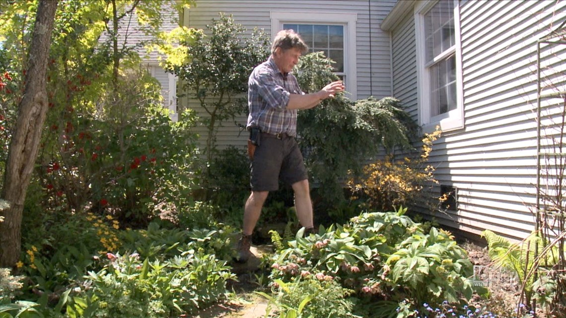Simple Solutions for Shade Plants