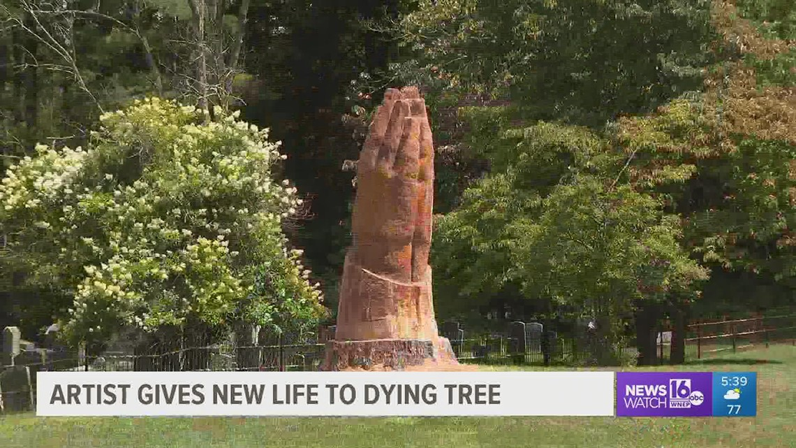 Artist gives new life to dying tree