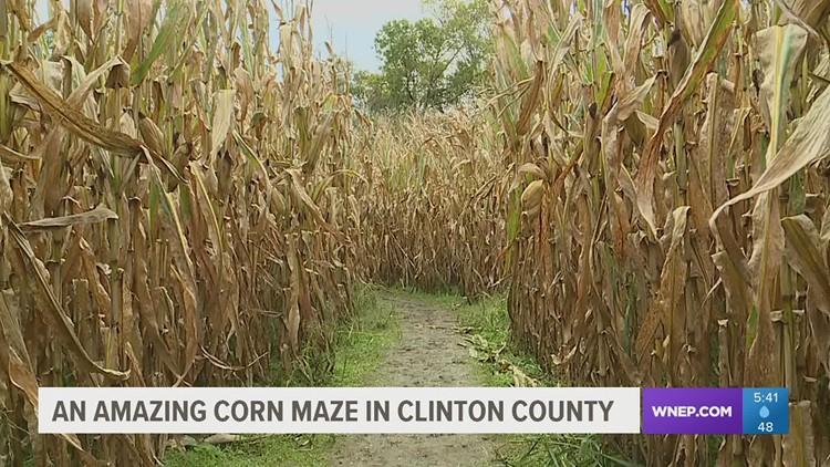 A-maze-ing fall fun in Clinton County