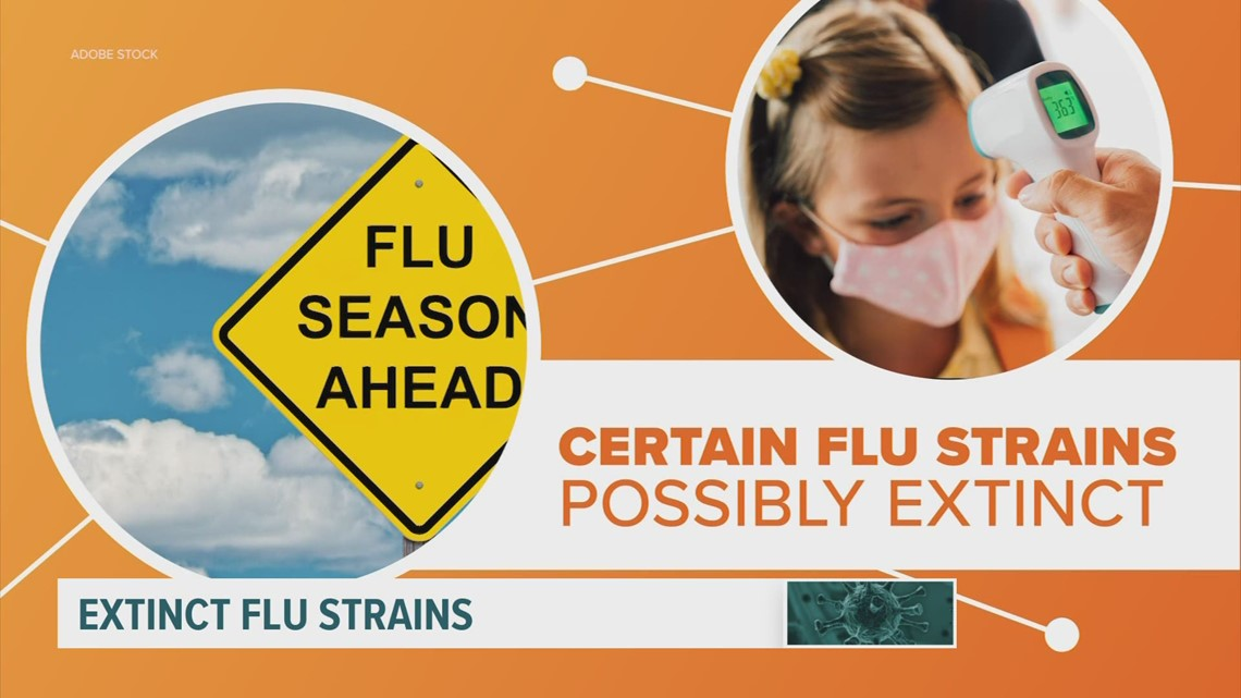 COVID safety measures may have killed certain strains of the flu