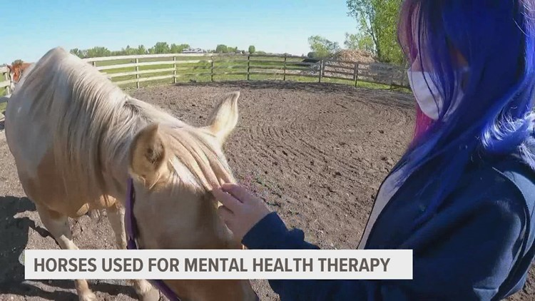 Boone facility using horses for mental health therapy