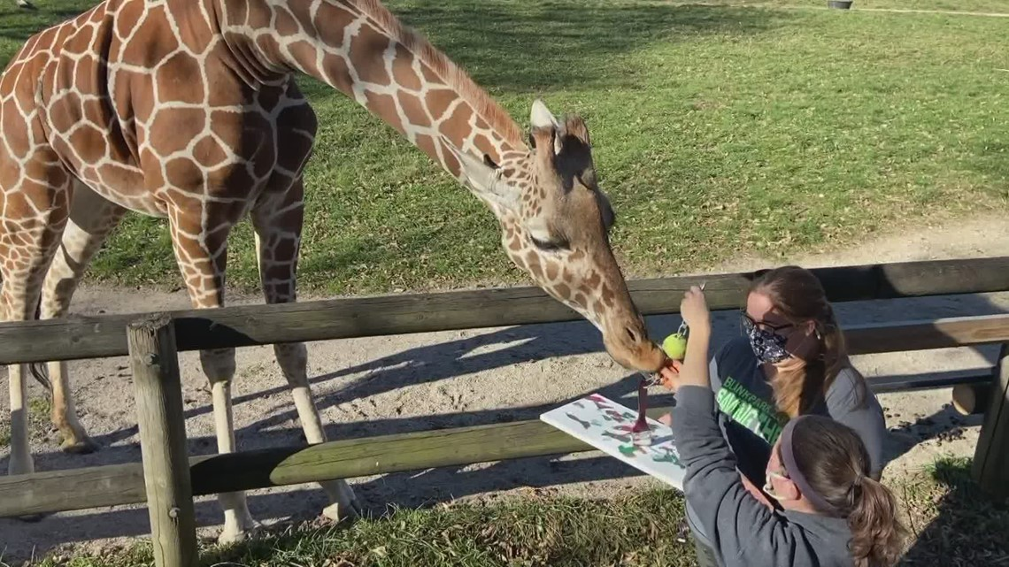 Wild Art 2.0 happening this weekend at the Blank Park Zoo