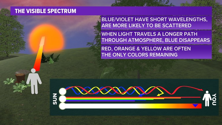 WEATHER LAB | Why sunrises and sunsets are so colorful, explained