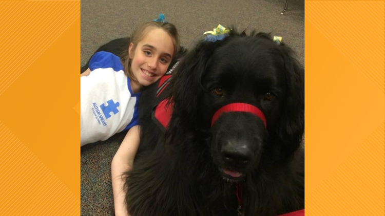Meet Boba the service dog, who is more than 'just fluff'