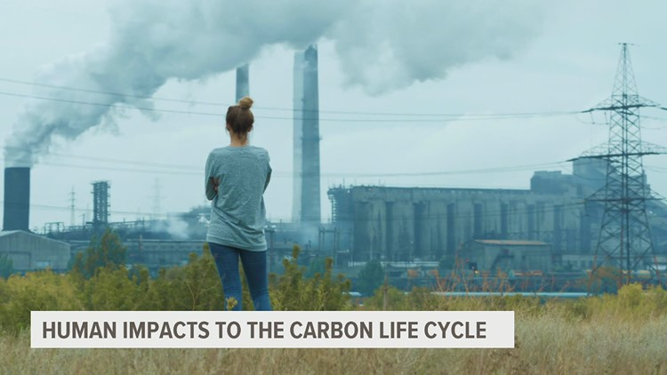 Disrupting the carbon cycle | Climate Smart