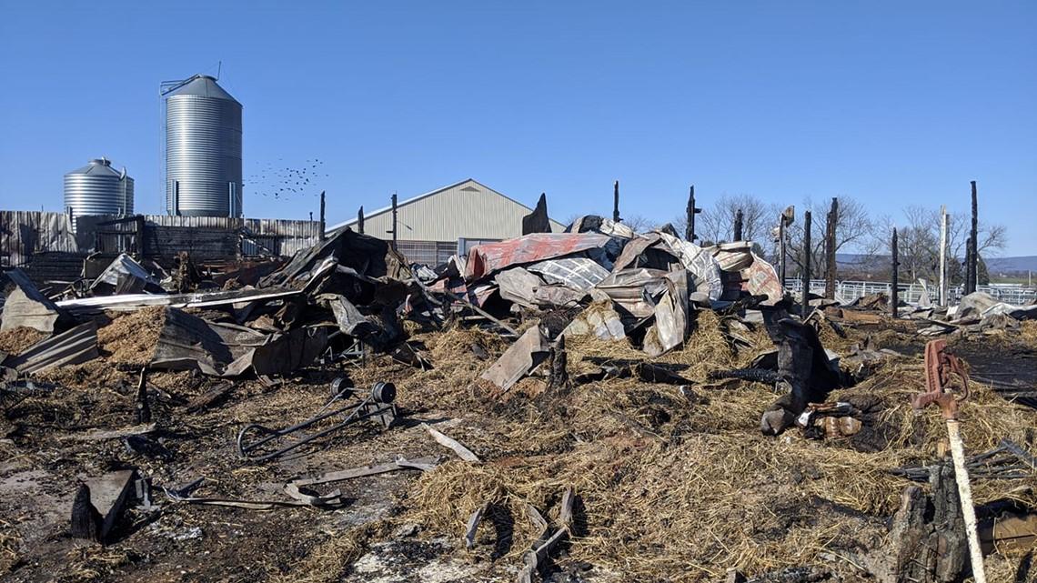 15 horses die in Lebanon County barn fire, community rallies to rebuild