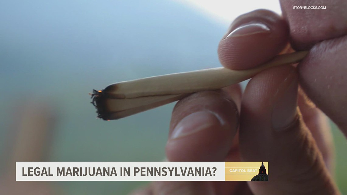 GOP State Sen. Mike Regan pushes for legal marijuana in Pennsylvania   FOX43 Capitol Beat, 2