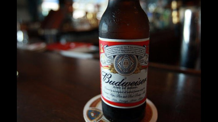 what is the alcohol content of a budweiser