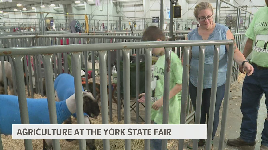 The York Fair continues its agricultural tradition