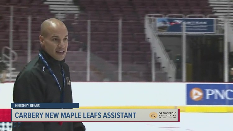 Spencer Carbery leaving Bears for Maple Leafs