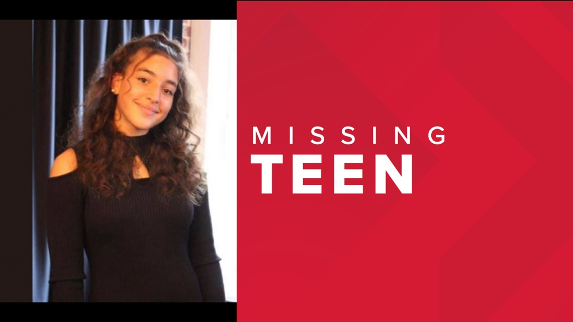 Police searching for missing Dauphin County teen