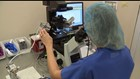 FOX43 Focal Point: Infertility  Egg freezing stops aging process, lets you build family when you are ready