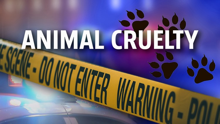 Newberry Township man charged with animal cruelty