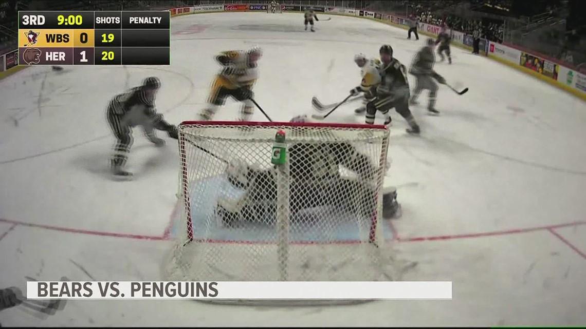 Kessy & Bears own WB/S Penguins