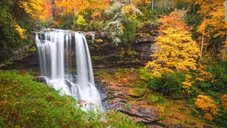Will our historic August and September rainfall affect our fall colors? | Bradon's Barometer, 2