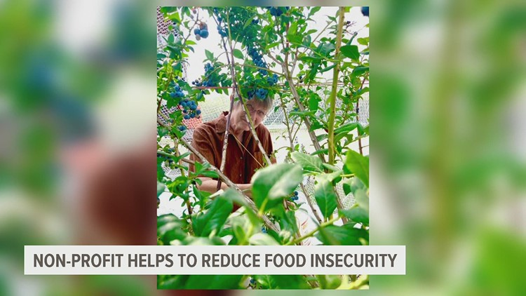Gleaning Project of South Central Pa. provides fresh and sustainable food system for residents in Franklin and Adams counties