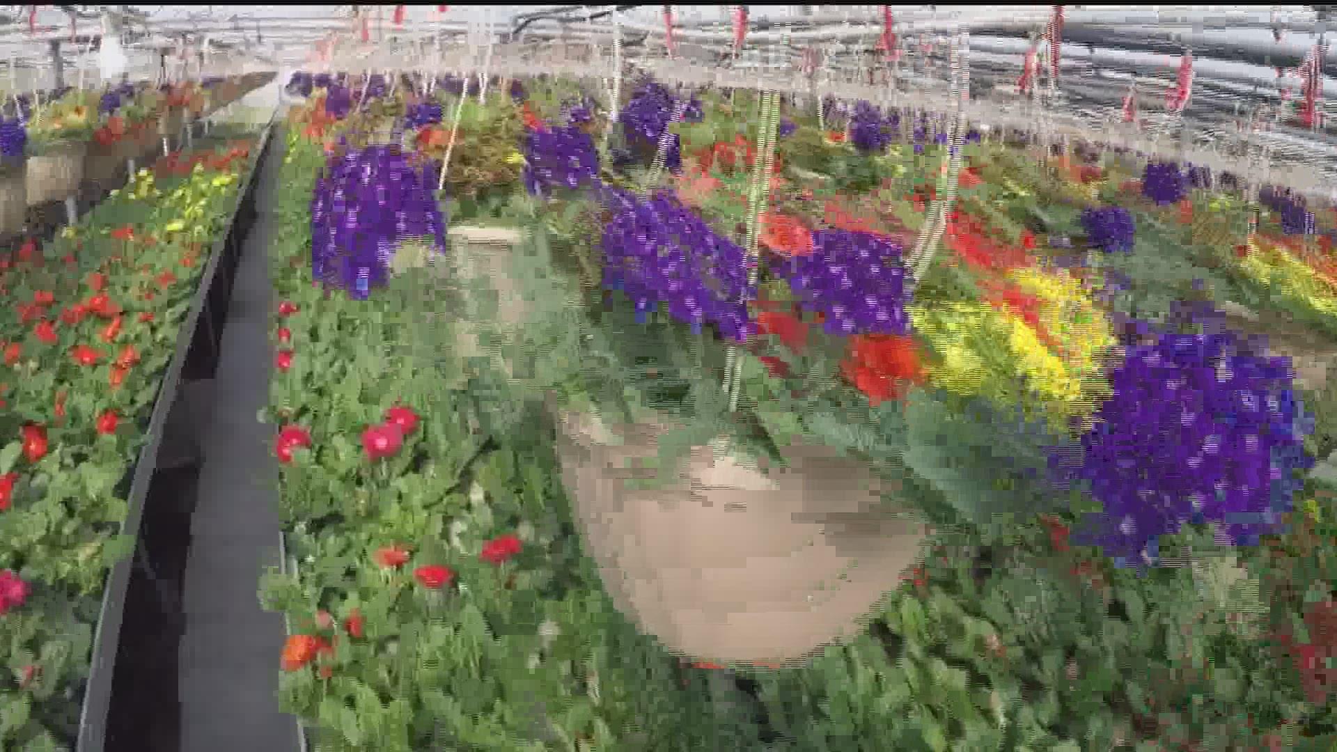 Garden Centers Denied Exemption Waiver Pa Farm Bureau Wants Them