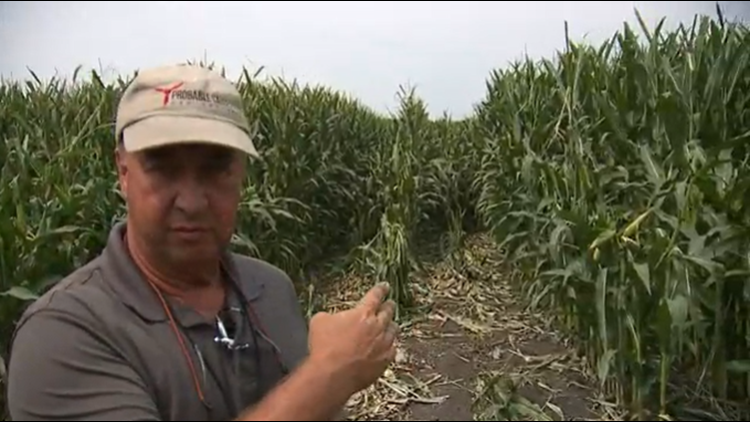 Full interview: Pilot of crashed Whiteside County plane details experience