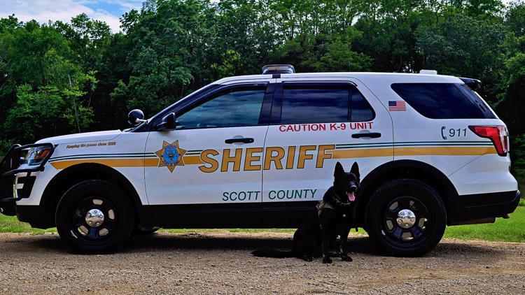 Meet Spike and Denali: Scott County Sheriff's Office K9 Deputies