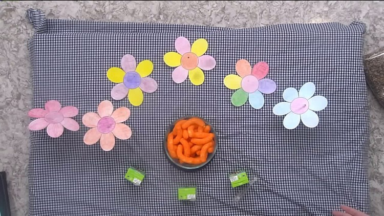 How do Cheetos represent pollen? Find out here