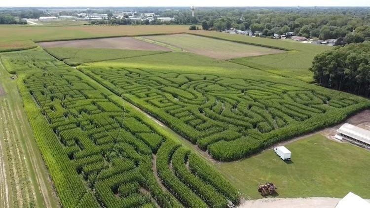 Rock Falls Farmer commemorates 20th anniversary of Sept. 11th attacks with corn maze