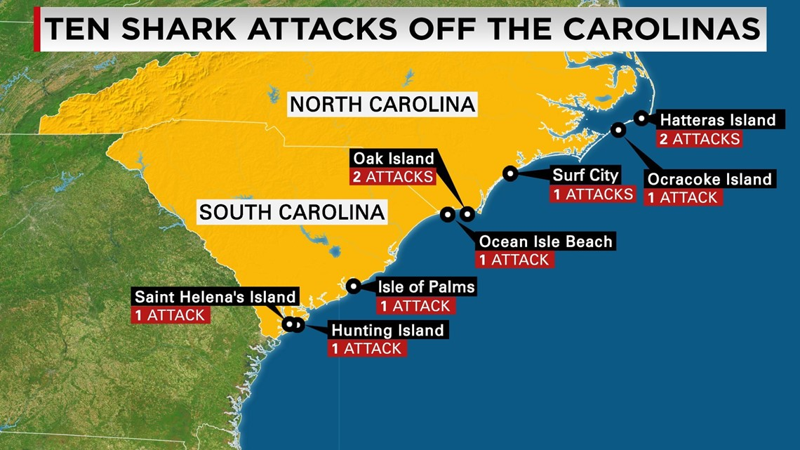 What S Behind Increase In Shark Attacks Off The Carolinas Wqad Com