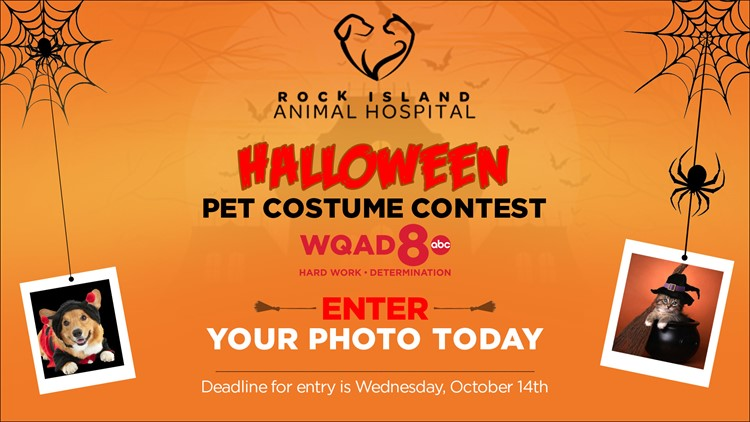 Halloween Costume Contest In The Qc Area 2020 Halloween Pet Costume Contest 2020 – Official Rules | wqad.com