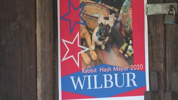 Kentucky town elects another dog mayor