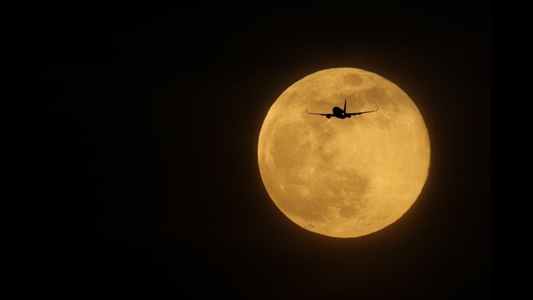 Moon On Halloween 2020 Rare Halloween blue moon, two supermoons coming in 2020 | wqad.com