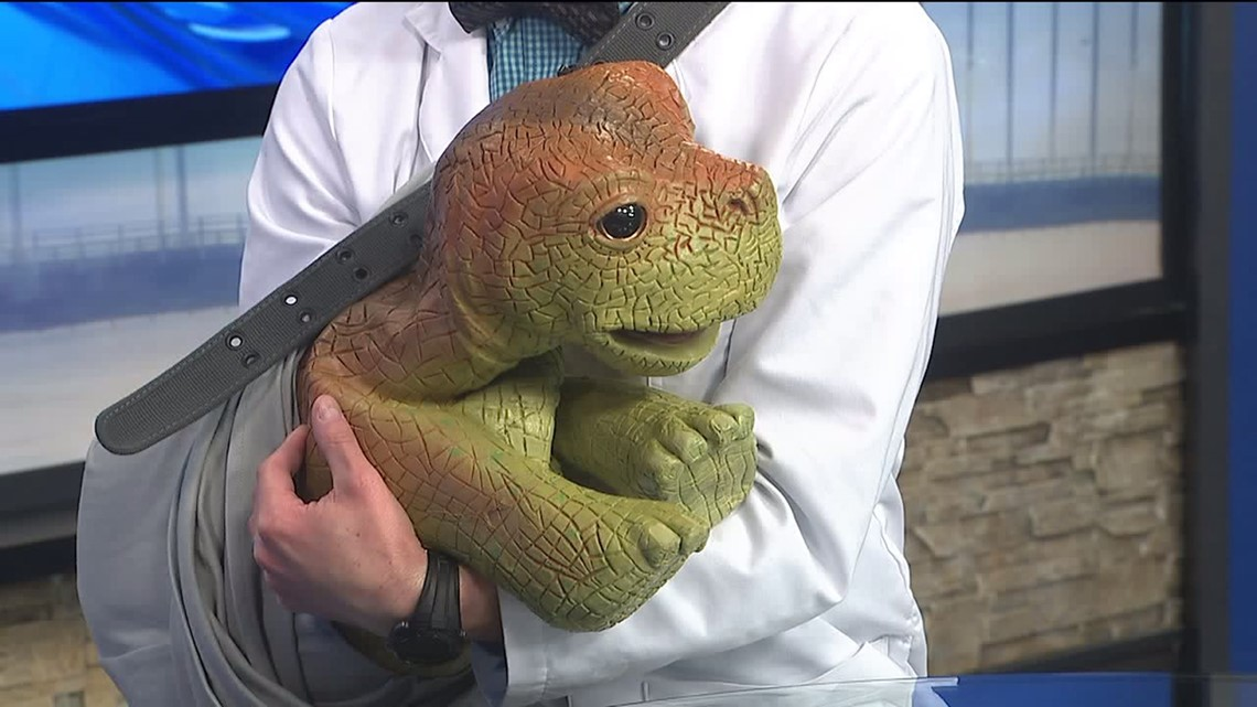 Discover the Dinosaurs: Dr. Terry Dactyl and Jack | wqad.com