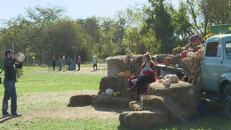 Fall family fun at Corn Crib Nursery's annual Cribfest