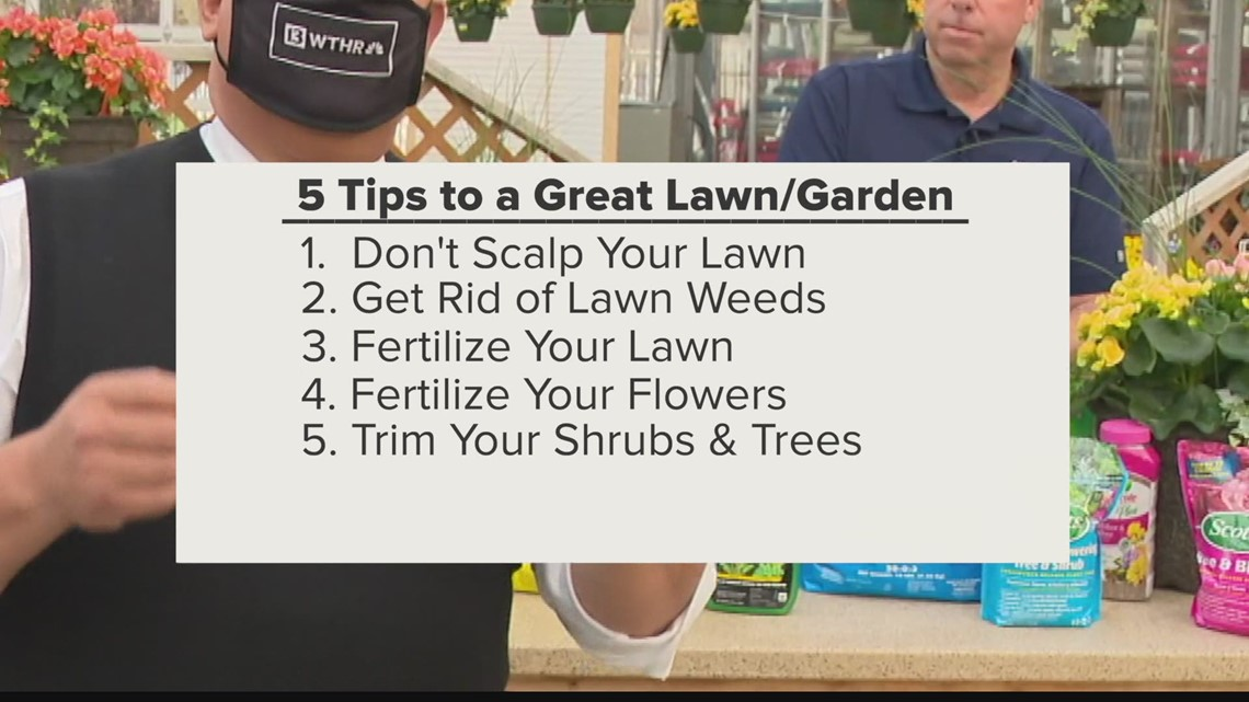 How to have the best yard and garden in your neighborhood