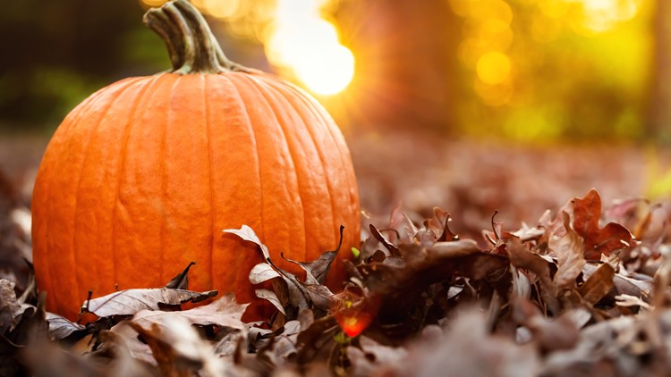 Central Indiana festivals and spooky season activities that will give you all the fall feels