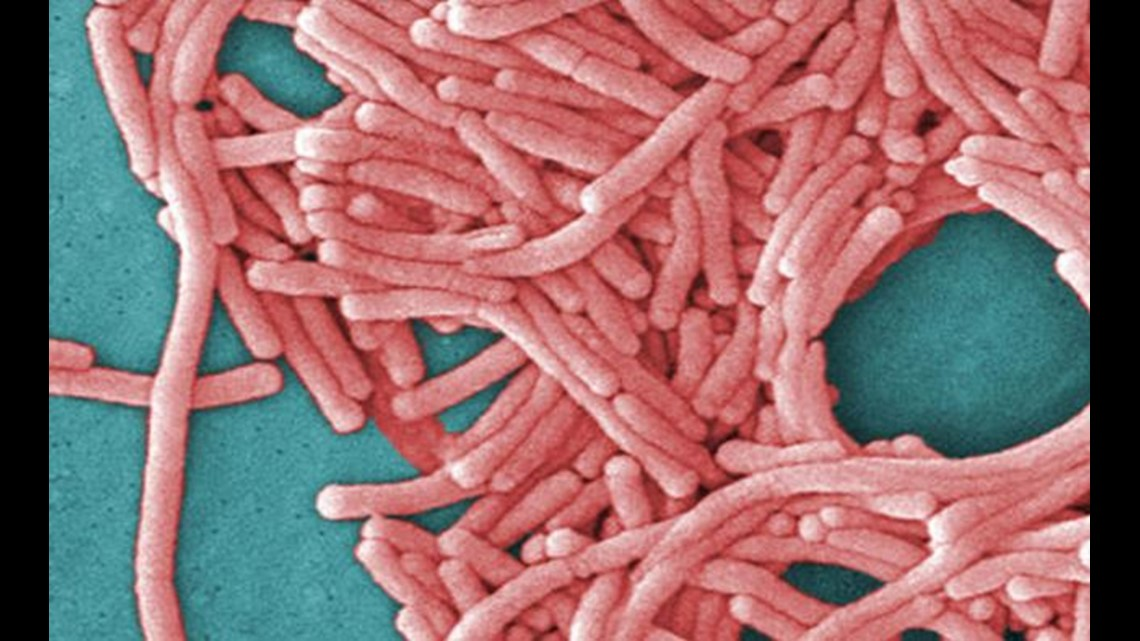 Indianapolis Healthplex temporarily closes after some members get legionnaires' disease