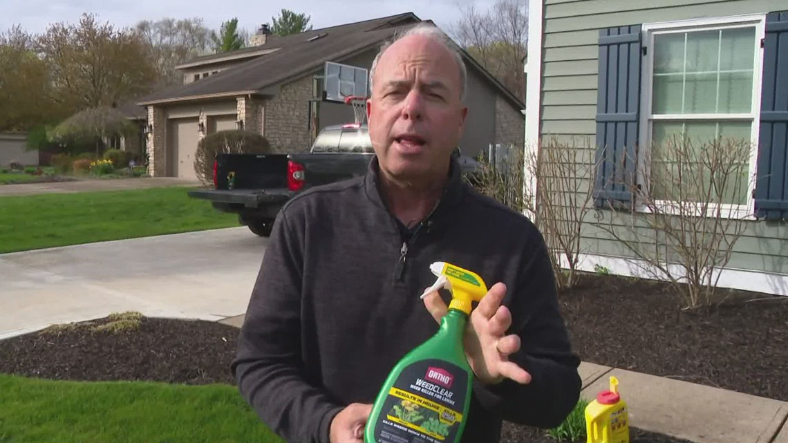 Pat Sullivan: Lawn and garden treatments you can start now