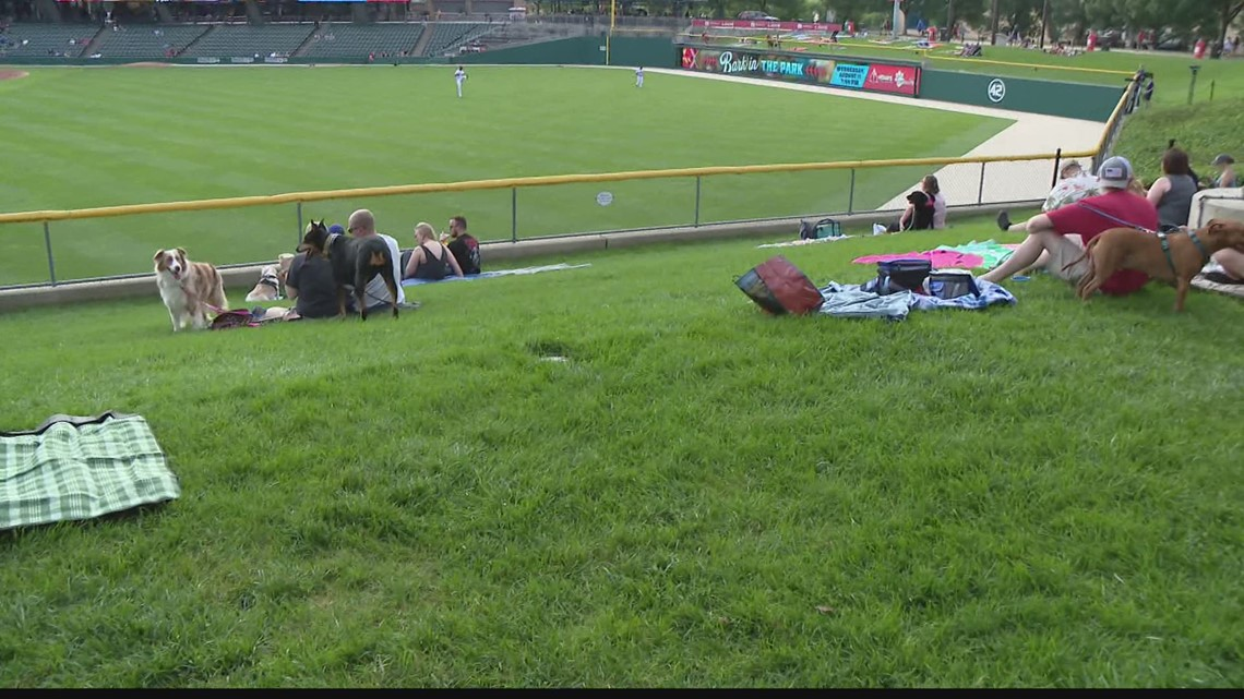 Fun at Victory Field this summer