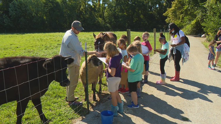 Hamilton Southeastern 2nd graders learning on the farm