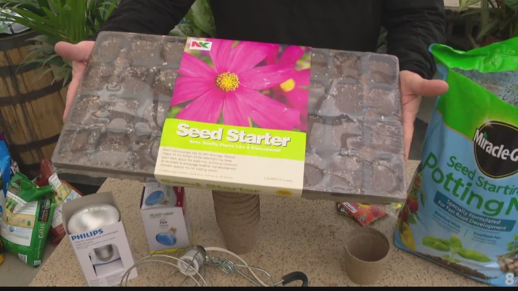 WATCH: Pat Sullivan shares how you can plant seeds indoors to transplant later