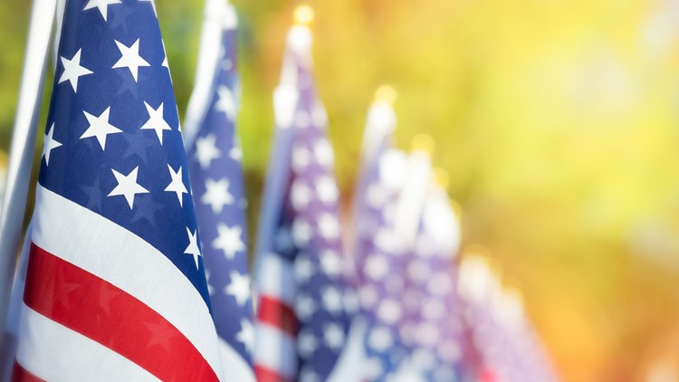 Full day of in-person Veterans Day events planned downtown