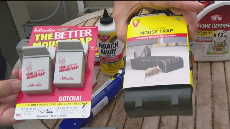 Pat Sullivan: Preventing pests from entering your home