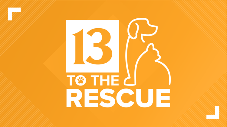 13 To The Rescue