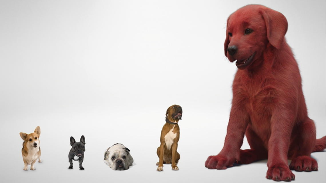 WATCH: Paramount Pictures releases first look at live-action 'Clifford the Big Red Dog'