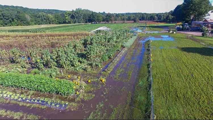 Woodbury farmers lose crops from Ida flooding
