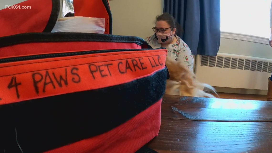 WorkInCT: A pet service benefiting since the pandemic began