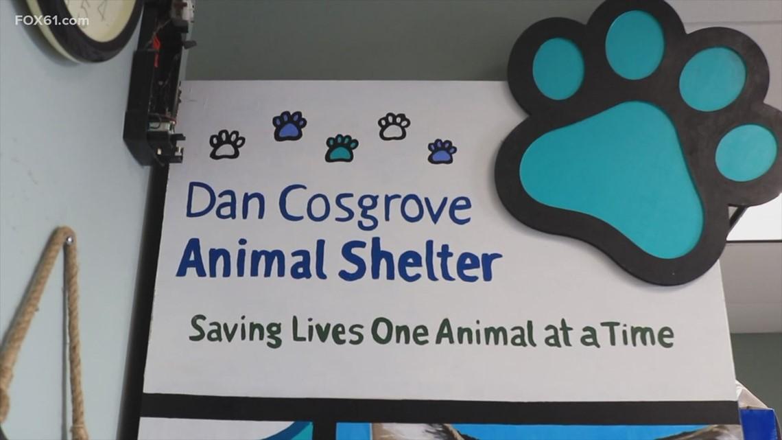 FOX61 Student News: Dan Cosgrove Animal Shelter