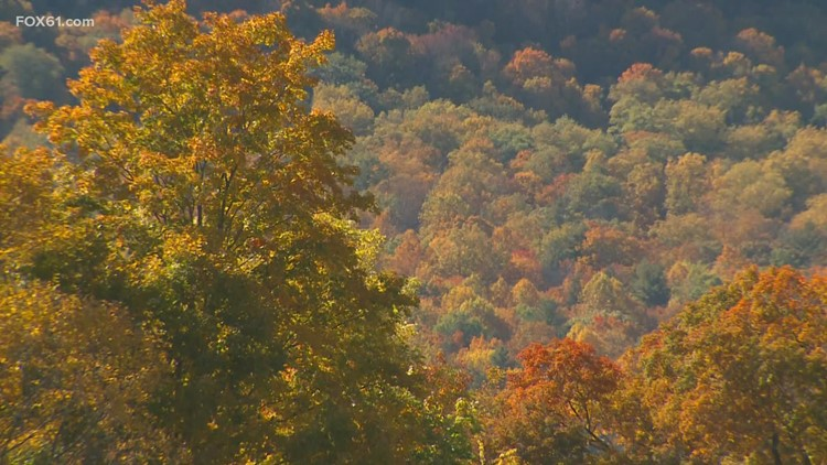 'Fantastic' outlook | No shades of grey, Fall colors are coming to Connecticut