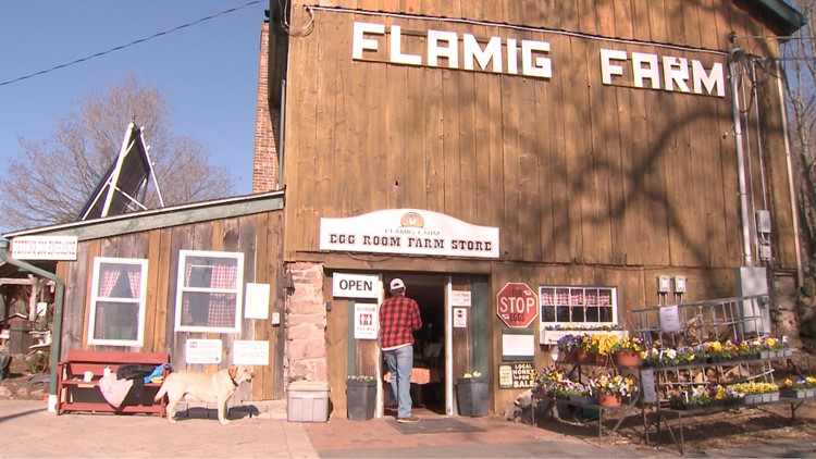 CT Bucket List: Flamig Farm in West Simsbury continues traditions of fun