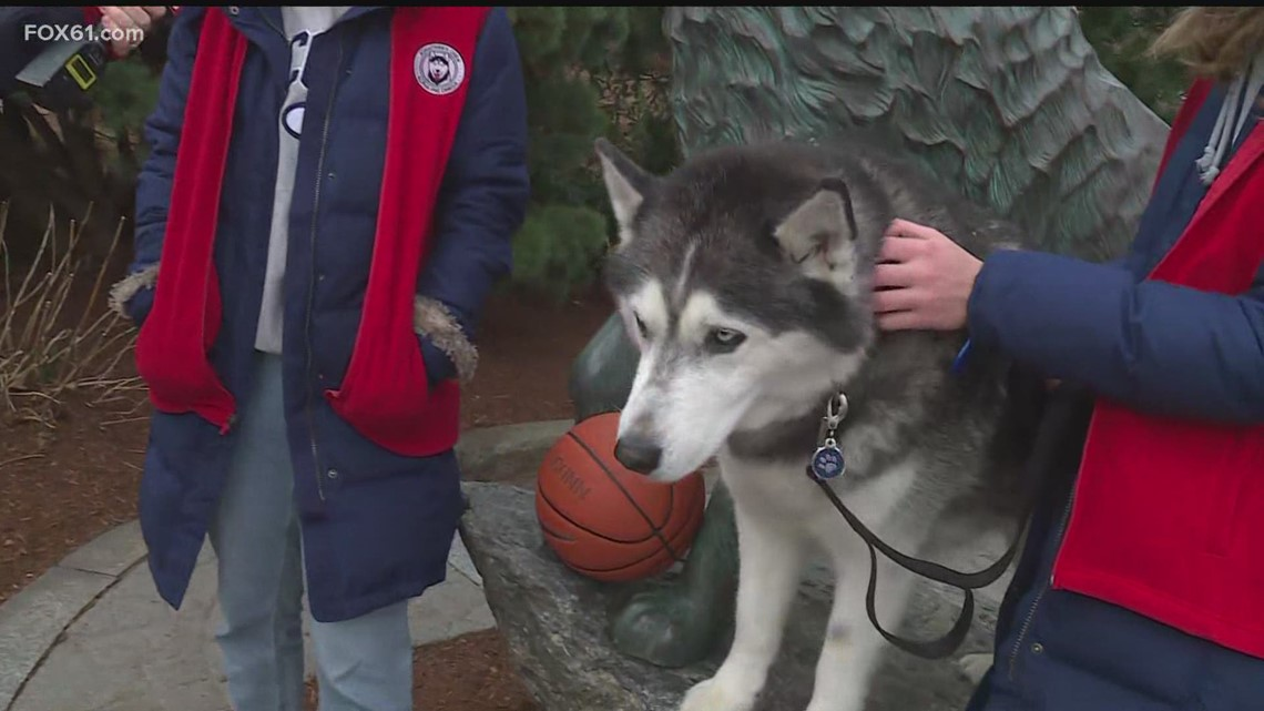 Interview with Jonathan the Husky ahead of Final Four